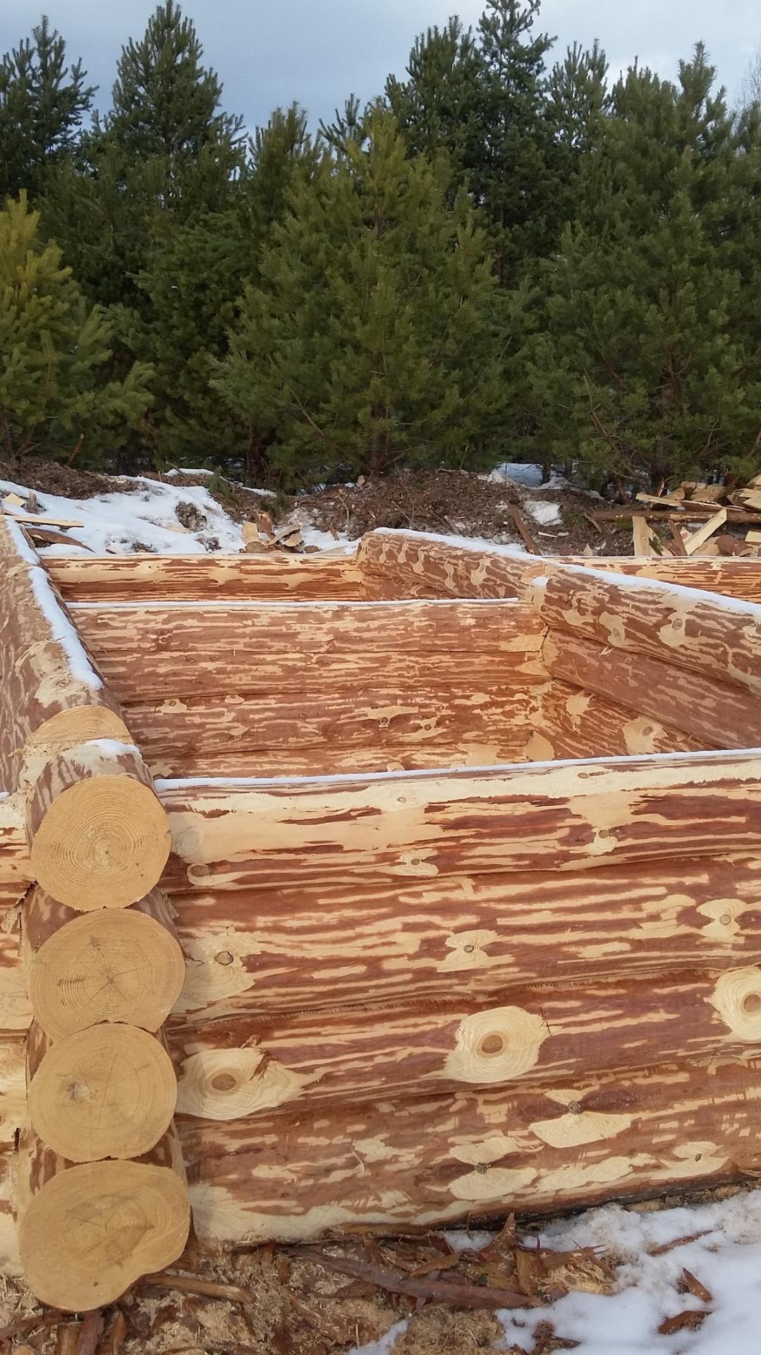 Сруб дома из зимнего леса с доставкой