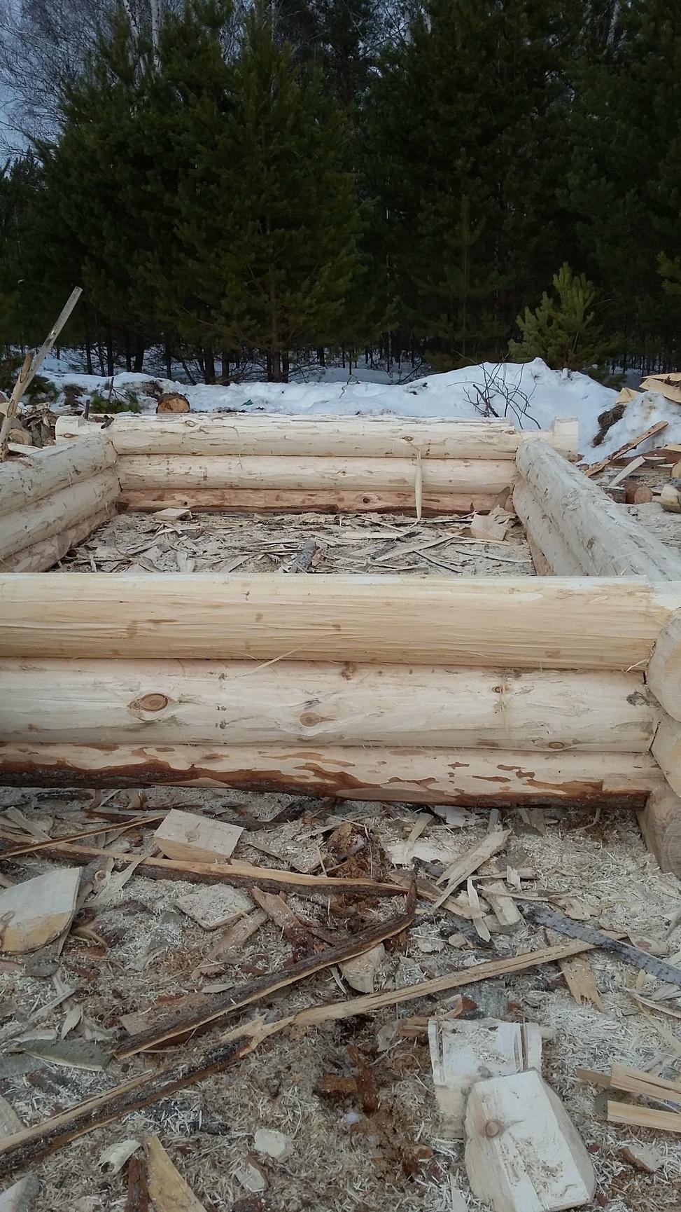 Сруб бани из осины